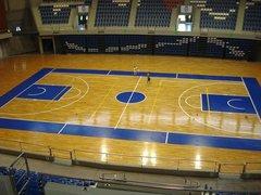 basket32.jpg